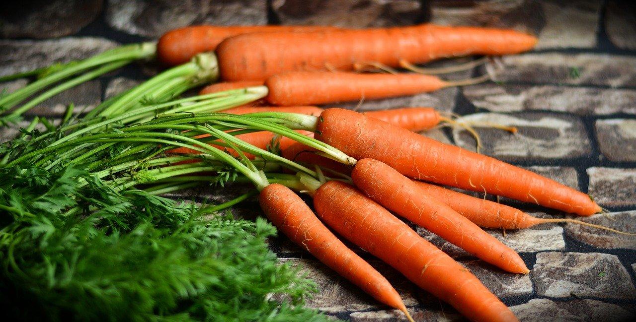 Marchewka, popularne warzywo, znane i uprawiane na wiosnę.
